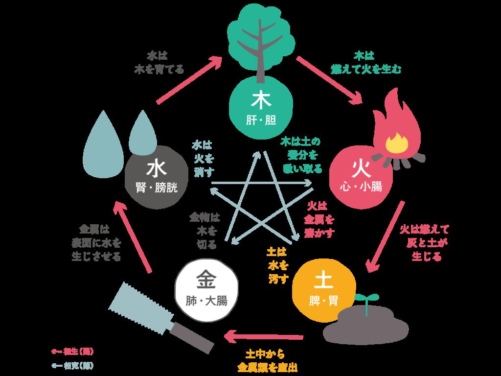 関連する臓腑を現した五行の図